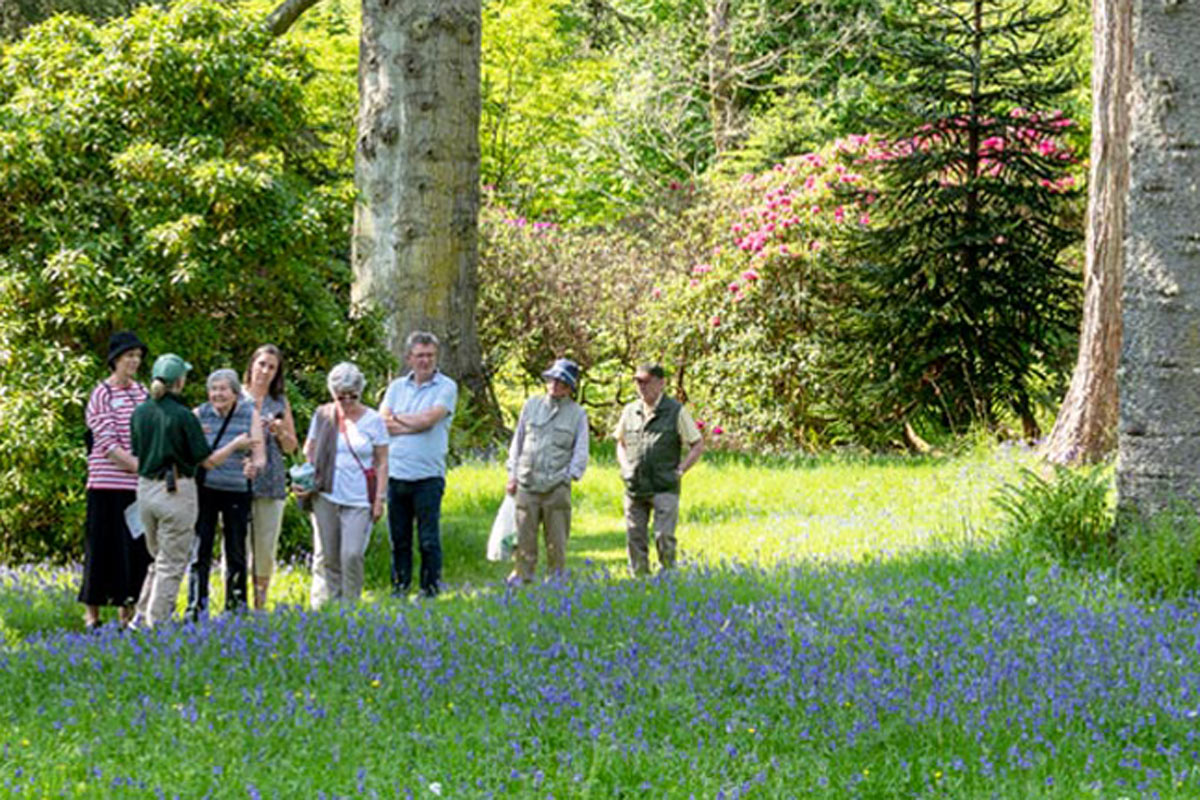 guided tour of Armadale Castle gardens